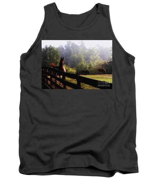 Arabian Horses In Field Tank Top