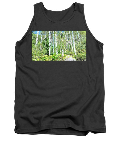 Aspen Splender Steamboat Springs Tank Top