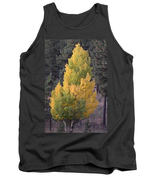 Aspen Tree Fall Colors Co Tank Top