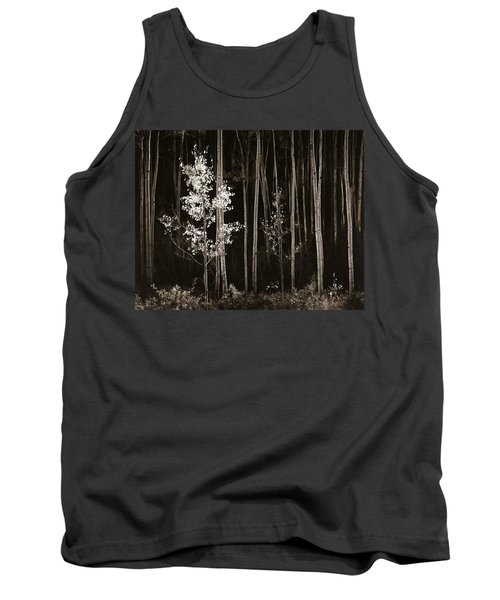 Aspens Northern New Mexico Tank Top