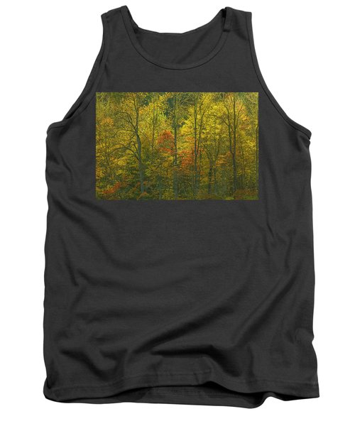At The Edge Of The Forest Tank Top by Ulrich Burkhalter