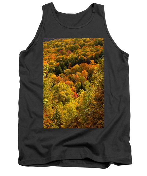 Autumn At Acadia Tank Top by Brent L Ander