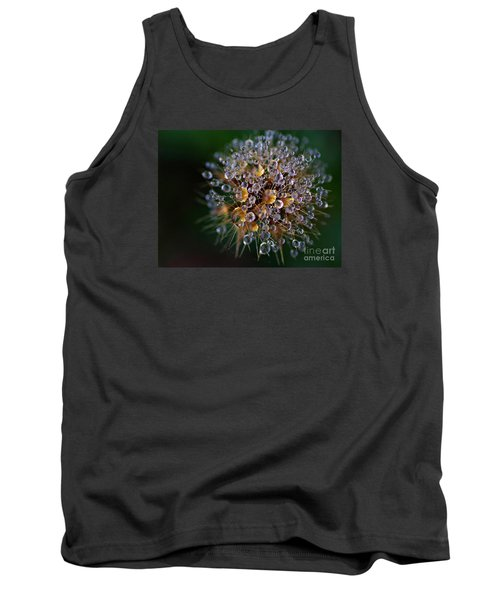 Autumn Pearls Tank Top by AmaS Art