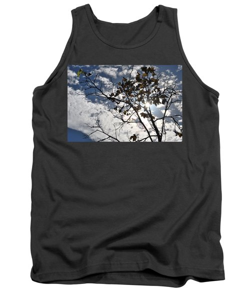 Autumn Yellow Back-lit Tree Branch Tank Top