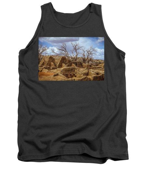 Aztec Ruins, New Mexico Tank Top