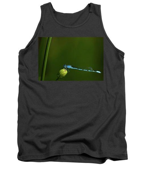 Azure Damselfly-coenagrion Puella Tank Top