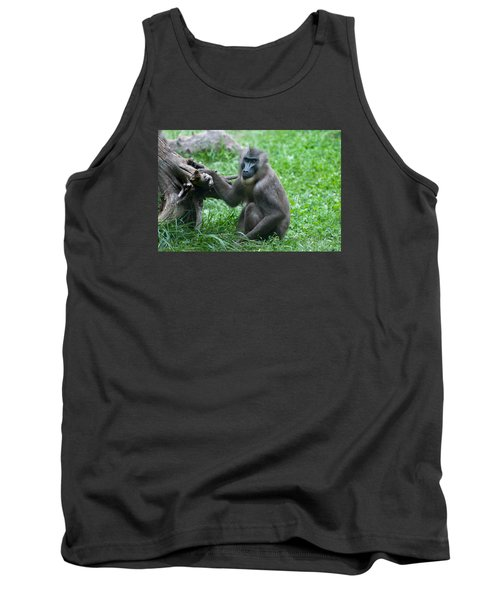 Tank Top featuring the photograph Baboon by Monte Stevens