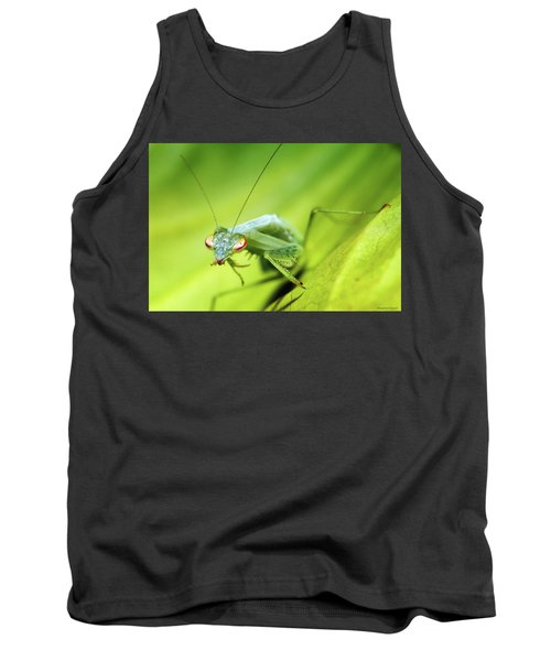 Baby Praymantes 6677 Tank Top by Kevin Chippindall