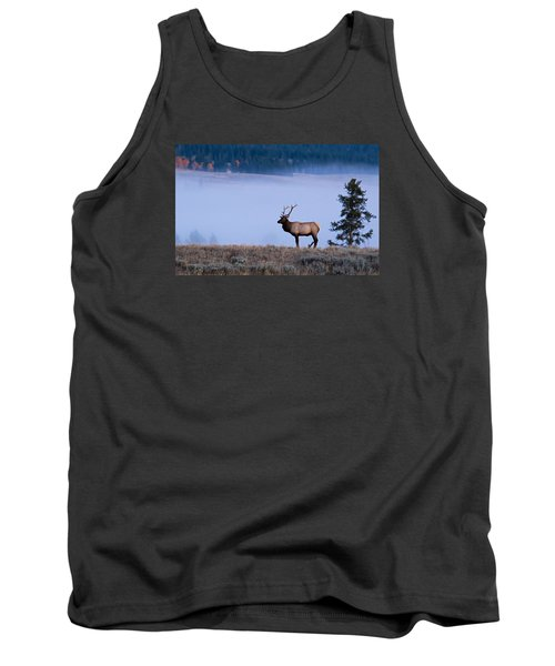Bachelor Days Tank Top