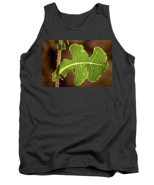 Tank Top featuring the photograph Back Side Light On A Leaf At Sunset by Yoel Koskas