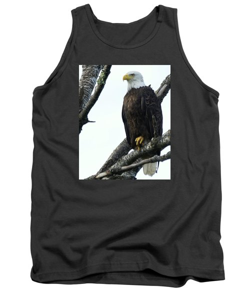 Tank Top featuring the photograph Bald Eagle 4 by Steven Clipperton