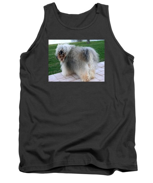 ball of fur Havanese dog Tank Top by Sally Weigand