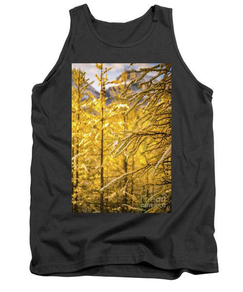 Banff Larch Valley Forest Of Gold Tank Top