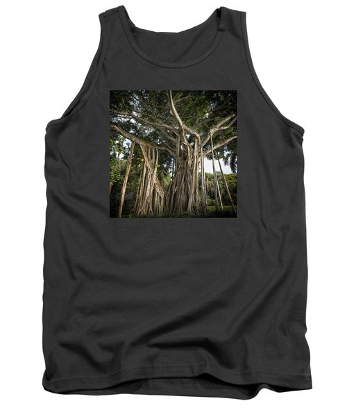 Tank Top featuring the photograph Banyan Tree At Bonnet House by Belinda Greb
