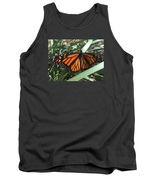 Beautiful Fall Butterfly  Tank Top by Paula Brown