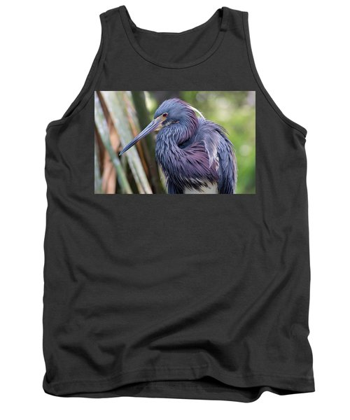 Beautiful Tricolored Heron Tank Top