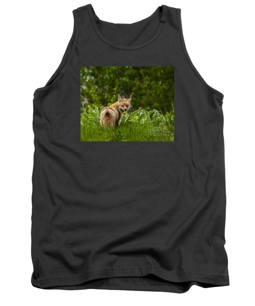 Tank Top featuring the photograph Beaver Creek Mama Fox In Spring by Yeates Photography