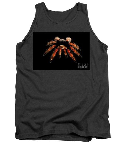 Big Hairy Tarantula Theraphosidae Isolated On Black Background Tank Top