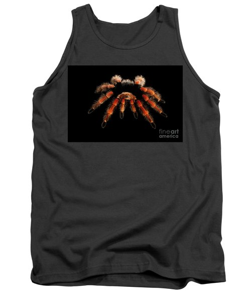 Big Hairy Tarantula Theraphosidae Isolated On Black Background Tank Top
