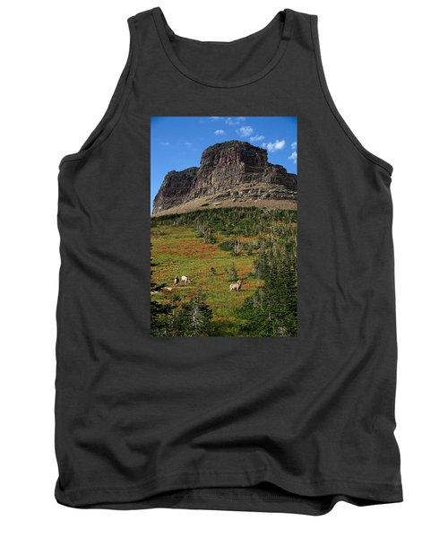 Big Horn Sheep Tank Top by Lawrence Boothby