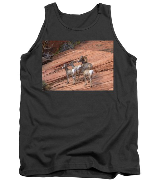 Big Horn Sheep, Zion National Park Tank Top