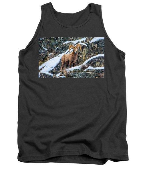 Bighorn Ram 3 Tank Top
