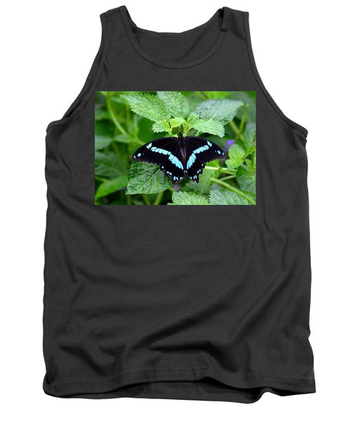 Blue Banded Swallowtail Butterfly Tank Top