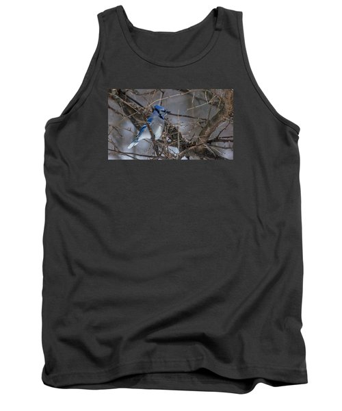 Tank Top featuring the photograph Blue Jay by Dan Traun