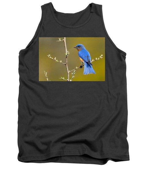 Bluebird Bliss Tank Top