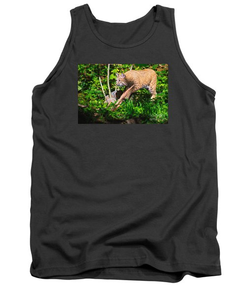 Bobcat At Water's Edge Tank Top by Ansel Price