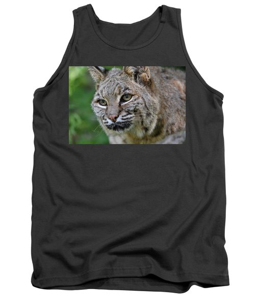 Bobcat In The Trees Tank Top
