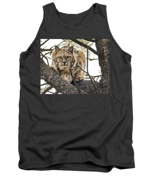Bobcat In Winter Tank Top