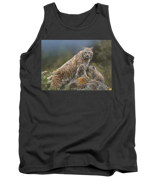 Bobcat Mother And Kittens North America Tank Top