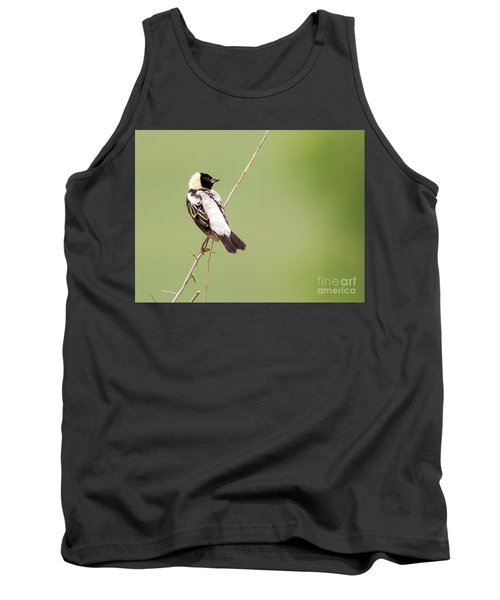 Tank Top featuring the photograph Bobolink Looking At You by Ricky L Jones