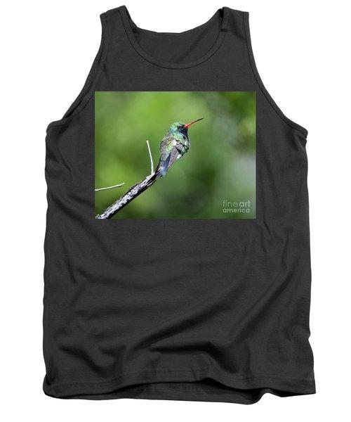 Broad-billed Hummingbird Tank Top