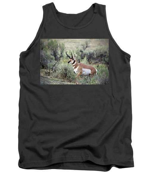 Pronghorn Buck Tank Top