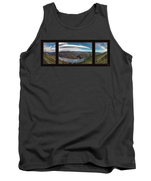 Brownlee Triptych Tank Top by Leland D Howard
