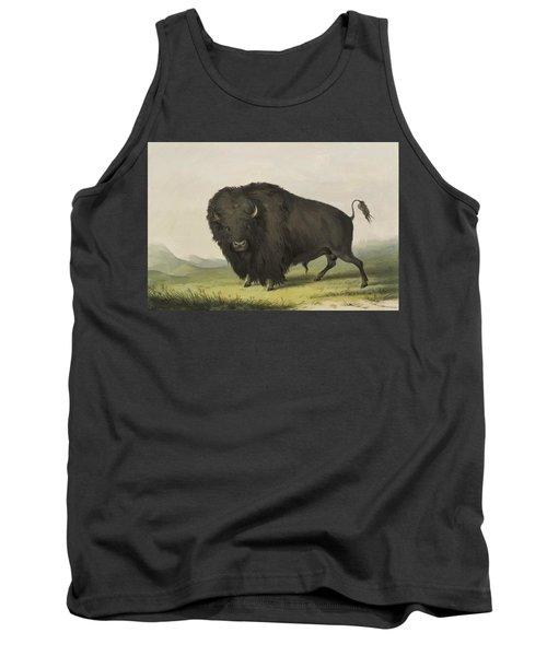Buffalo Bull Grazing 1845 Tank Top