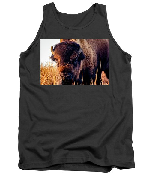 Buffalo Face Tank Top by Jay Stockhaus