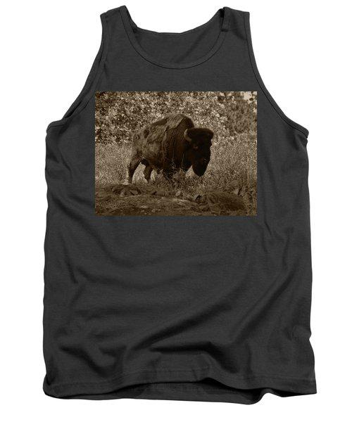 Buffalo Junction Tank Top by B Wayne Mullins