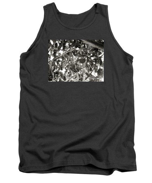 Tank Top featuring the photograph Bw Cobweb Tree by Megan Dirsa-DuBois