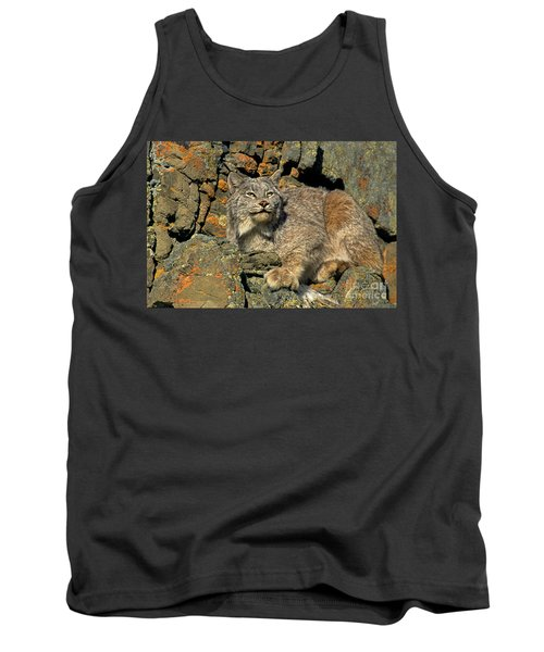 Tank Top featuring the photograph Canadian Lynx On Lichen-covered Cliff Endangered Species by Dave Welling