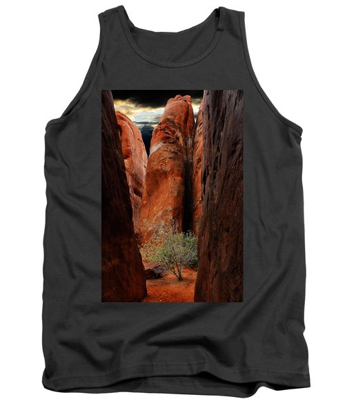 Canyon Tree Tank Top