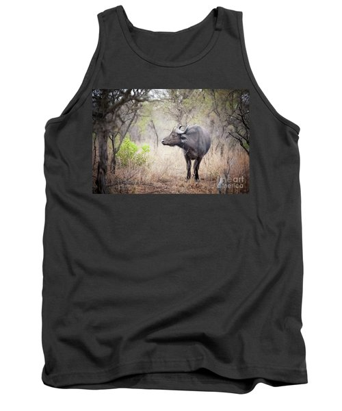Cape Buffalo In A Clearing Tank Top