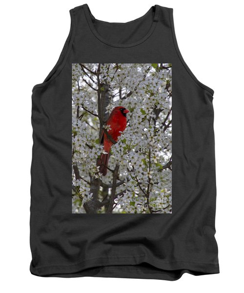 Cardinal In White Blossoms Tank Top by Barbara Bowen