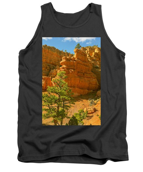 Casto Canyon Tank Top