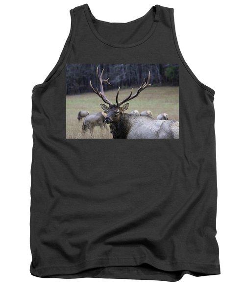 Cataloochee Elk Tank Top