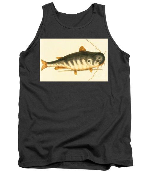 Catfish Tank Top by Mark Catesby