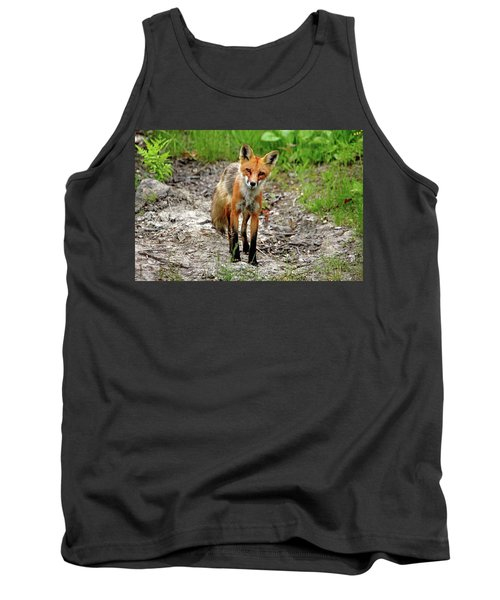 Cautious But Curious Red Fox Portrait Tank Top by Debbie Oppermann