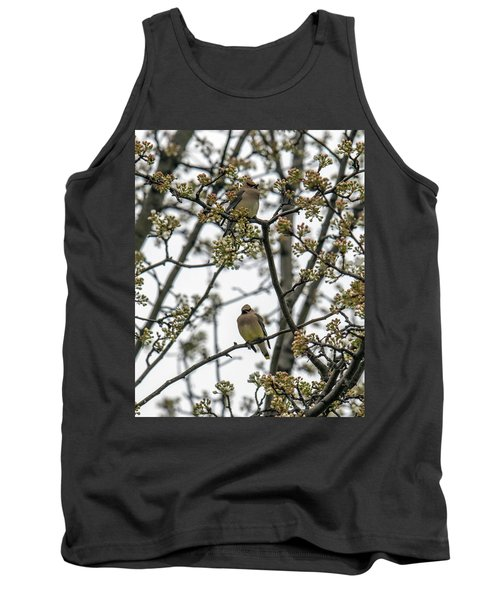 Cedar Waxwings In A Blossoming Tree Tank Top